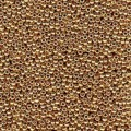 10 g 8/0 Seed Beads, Duracoat Galvanized Champagne
