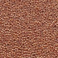 10 g 11/0 Seed Beads, Duracoat Galvanized Muscat